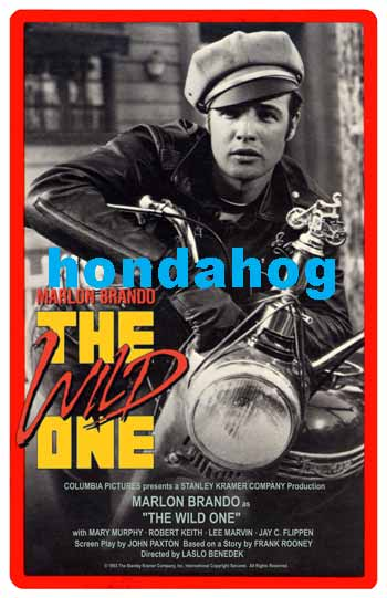 The Wild One (El Salvaje)
